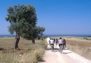 in_bici_parco_dune_costiere_coop_Serapia_rid